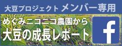 大豆プロジェクトレポート