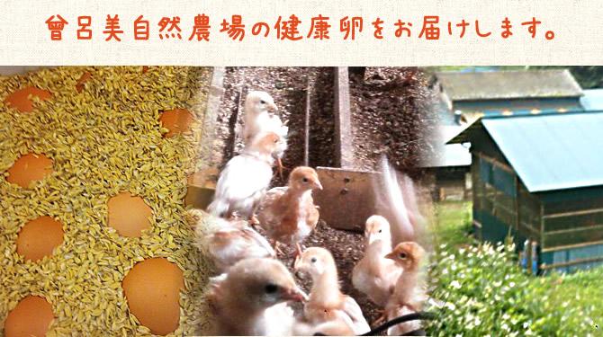曽呂美自然農場:曽呂美自然農場の健康卵をお届けします